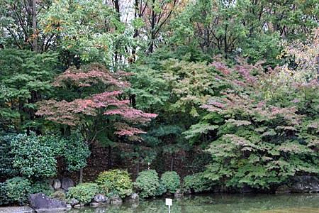 府中の森公園2.jpg