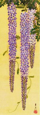 藤の花400.jpg